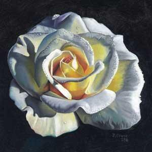A painting of a rose