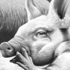 Animal Farm - Squealer