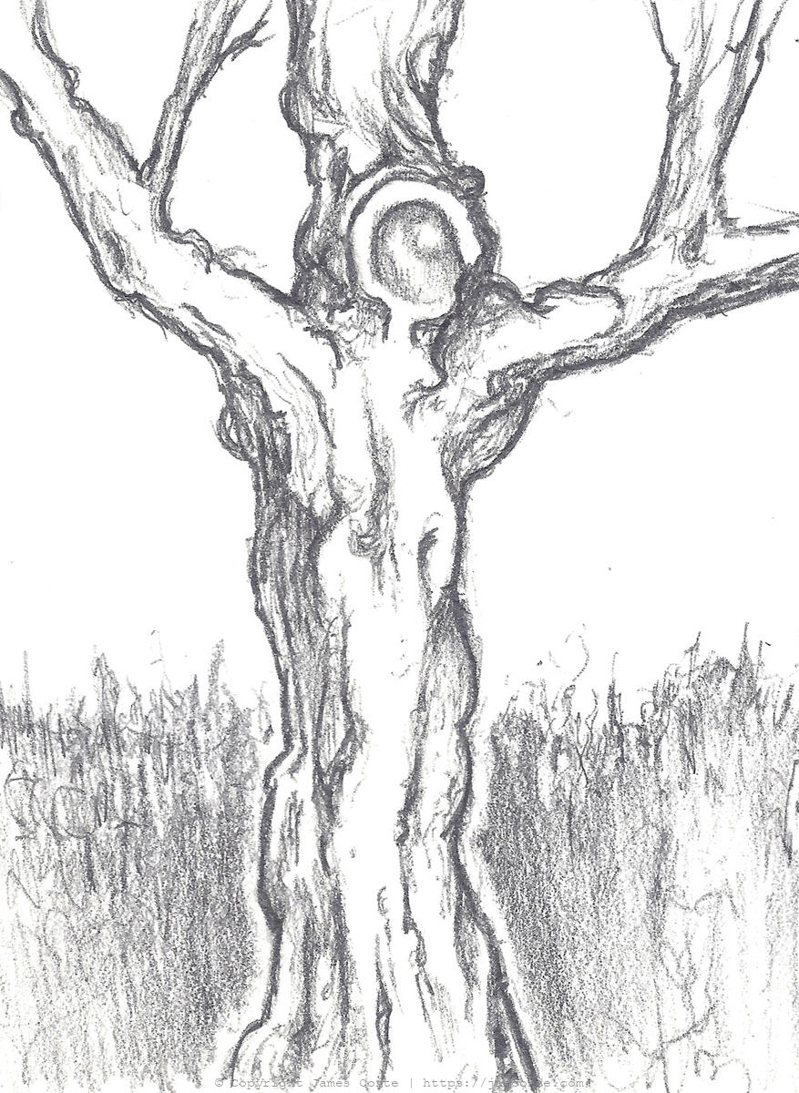 Drawing of a Tree that looks like the crucified Jesus