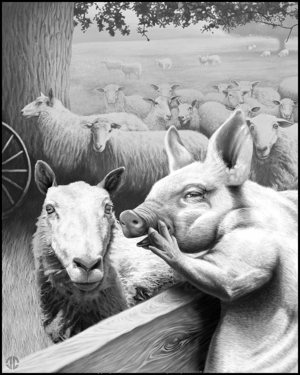 conflicting perspective essay on animal farm